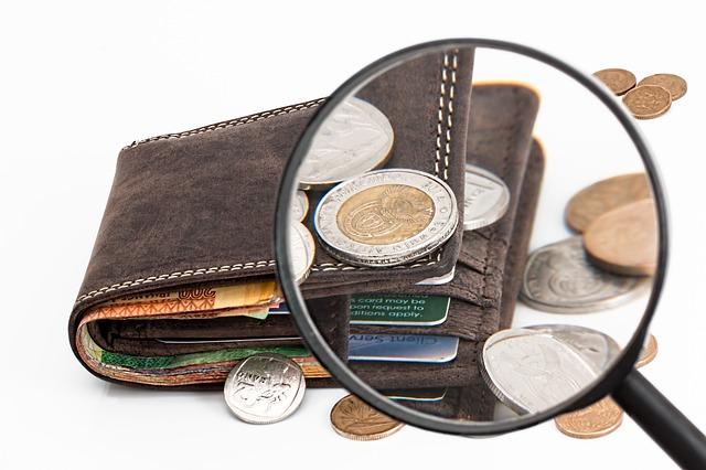 brązowy portfel z monetami i lupą, zdjęcie ilutruje artykuł p.t. podział majątku wspólnego